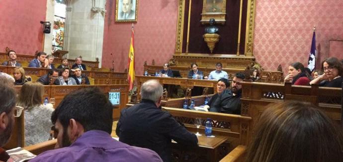 Soler intervenint al Ple extraordinari del Consell de Mallorca